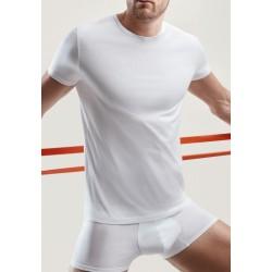 Perofil Active Maglietta Uomo Filo scozia girocollo mezza manica 3 T-shirt